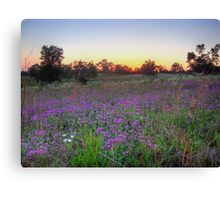 Countryside Color Canvas Print