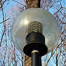 Driveway Globe Lamp by Jane Neill-Hancock