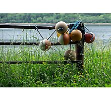 Buoys on a Fence. Photographic Print