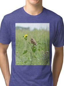 Burrowing Owl Tri-blend T-Shirt