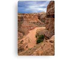 Entering Horseshoe Canyon - Utah Canvas Print