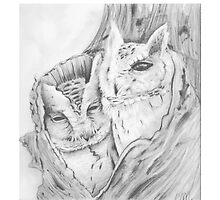 Owls in a nook by Troglodyte