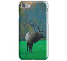 Oconoluftee Elk iPhone Case/Skin