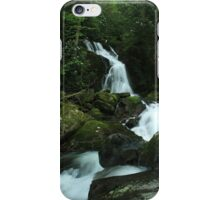 Mouse Creek Falls iPhone Case/Skin