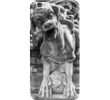 Munster Cathedral Gargoyle - Bern - Switzerland iPhone Case/Skin