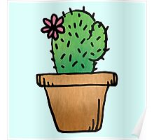 Cute ass cactus Poster