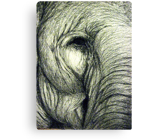 Elephant graphic illustration Canvas Print