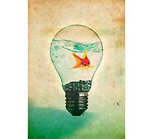 Fish Bulb Photographic Print