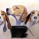 Middleburg Hounds by AngieDavies