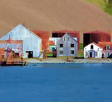 Stromness Whaling Station 1 by Marylou Badeaux