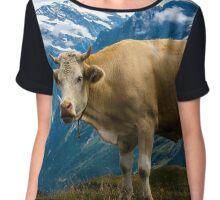 Grindelwald Cow - Bernese Alps - Switzerland Chiffon Top
