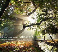 John 8:12 by willgudgeon