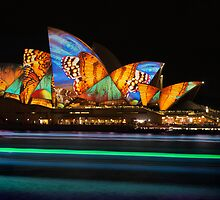 Vivid Sydney 1 - 2014 by DonnaLB