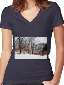 Winter in IR Women's Fitted V-Neck T-Shirt