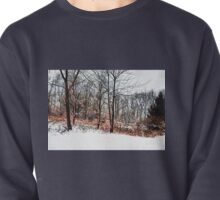 Winter in IR Pullover