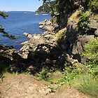 Hiking in Larrabee State Park by Julie Van Tosh Photography
