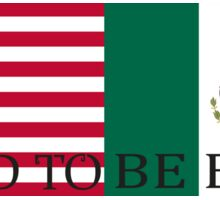 USA & Mexican Flags Sticker