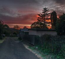 Frosty Dorrigo Morning in June by Clare Colins