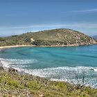 Picnic Bay, Wilsons Promontory, Victoria by Adrian Paul