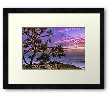 Sunrise and Pandanus Palms Framed Print