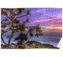 Sunrise and Pandanus Palms Poster