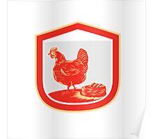 Hen Chicken Nest Egg Shield Retro Poster