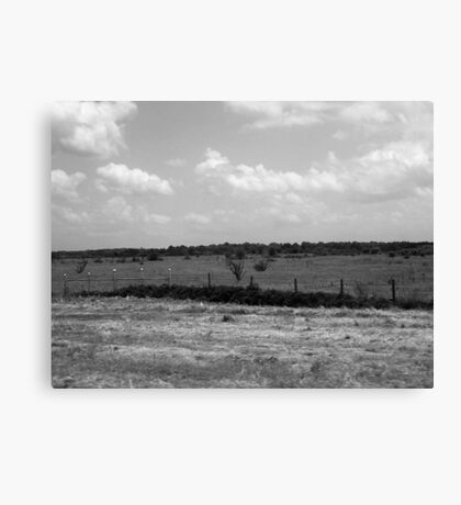 Field of Grey Canvas Print