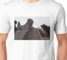 Rome's Fabulous Fountains - Piazza del Popolo Lion Unisex T-Shirt