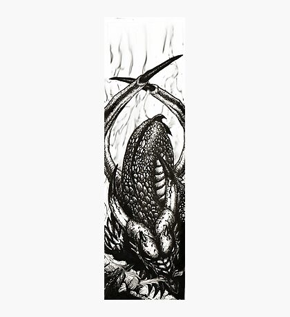 Let Sleeping Dragons Lie Photographic Print