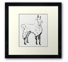 Happy Llama Framed Print