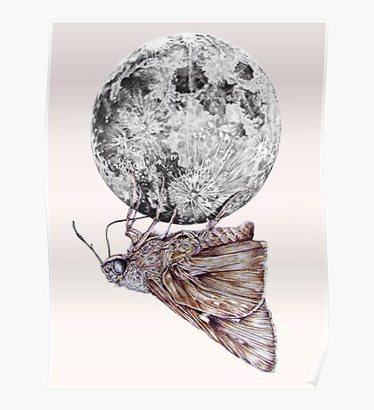 In which a moth is enticed by the light of the moon Poster