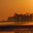 Early Morning by Els Steutel