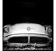 Lurking Photographic Print