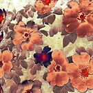 Vintage Roses Hips Colours by Vitta