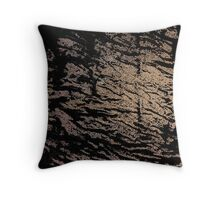 There will remain only ashes Throw Pillow