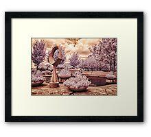 Arboretum Plaza Framed Print