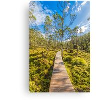 Snake Hill, Cradle Mountain, Tasmania Canvas Print