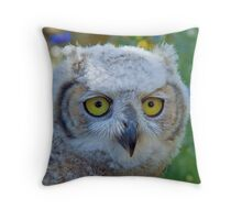 Canadian Horned Owl Chick in the meadow Throw Pillow