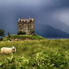 Castle in the fields by Marylou Badeaux