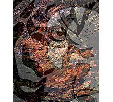 Design 6 Photographic Print