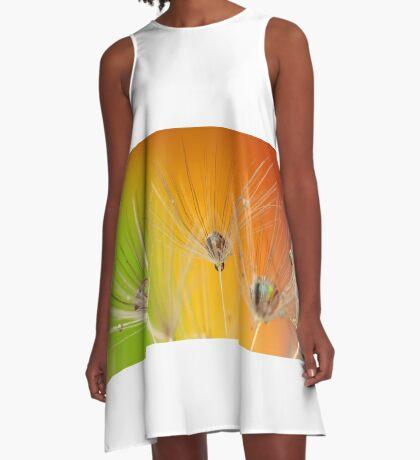 COLOURED DANDELIONS A-Line Dress