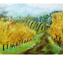 Oregon Vineyard Acrylic Painting Photographic Print