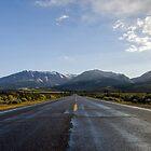 Open Road by Steven Williams