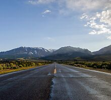 Open Road by Steven Williams