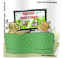 Graze Anatomy For Cow Viewing Poster