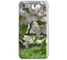 Pink and White Blossoms  iPhone Case/Skin