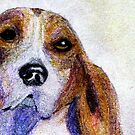A Soulful Hound by AngieDavies