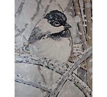 Chickadee Painting Photographic Print