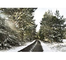 Winter wonderland at Crookwell.  Photographic Print