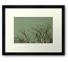 November Skies Framed Print